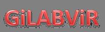 iLabRS participa en GiLABViR